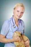 兽医在手上的拿着一只猫 图库摄影