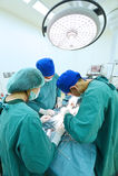 兽医医生工作运转中室的小组 免版税图库摄影