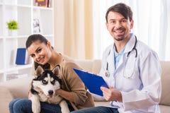 兽医 免版税库存图片