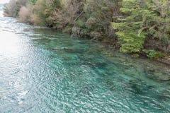 内乌肯省省的,阿根廷Lago Correntoso 库存图片