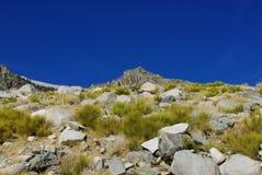 内华达山脉,加利福尼亚 免版税库存照片