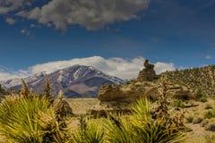 内华达山,美国 库存图片
