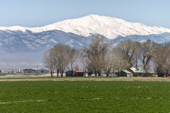 内华达高沙漠大农场土地 免版税库存照片