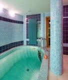 内部池游泳 库存照片