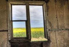 内部被放弃的房子 库存图片