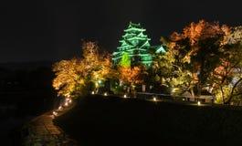 冈山城堡夜风景在冈山,日本 库存照片