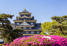 冈山城堡 免版税库存图片