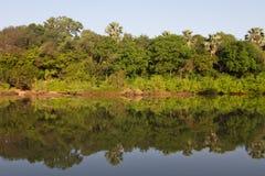 冈比亚河在Niokolo Koba 图库摄影