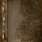 册页褐色盖子玫瑰 免版税库存图片