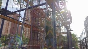 冒险公园的,训练上升活跃少女 通过障碍桩的困难的部分的孩子 ?? 股票视频