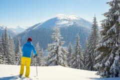 冒险家,妇女在冬天山站立 库存照片