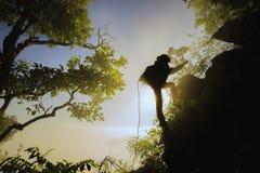 冒险旅行与有雾的早晨 免版税库存照片