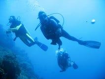 冒险热带潜水的水肺 库存图片