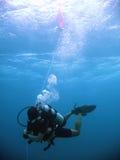 冒险热带潜水的水肺 免版税图库摄影