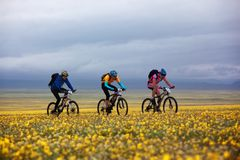 冒险自行车竞争山春天 图库摄影