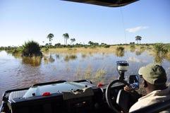 冒险&肾上腺素pur :Okavango三角洲使横穿陷入沼泽 免版税库存图片