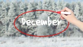 写与标志的妇女手12月在多雪的森林 免版税库存照片