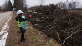 写在击倒的女性林业审查员灌木附近 股票录像
