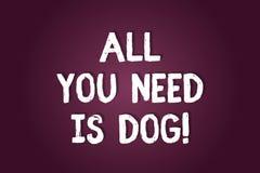 写您需要的所有的手写文本是狗 概念意思得到小狗是更加愉快的似犬恋人逗人喜爱的动物空白 皇族释放例证