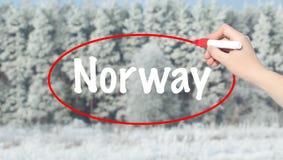写有一个标志的妇女手挪威在冬天森林 免版税图库摄影