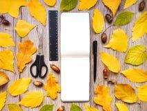 写生簿、统治者、剪刀和笔特写镜头,装饰用秋天黄色离开和橡子 顶视图,平的位置 库存照片
