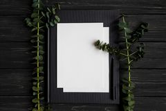 写生簿和笔在黑木桌上,装饰用绿色玉树分支 平的位置,顶视图 免版税库存图片