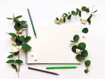 写生簿和铅笔在白色背景,装饰用绿色雪果分支和莓果 平的位置,顶视图 免版税库存照片