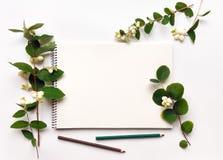 写生簿和铅笔在白色背景,装饰用绿色雪果分支和莓果 平的位置,顶视图 免版税图库摄影