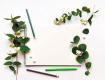 写生簿和铅笔在白色背景,装饰用绿色雪果分支和莓果 平的位置,顶视图 免版税库存图片