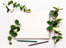 写生簿和铅笔在白色背景,装饰用绿色 免版税库存照片