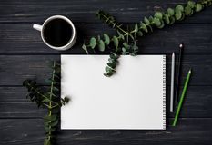 写生簿和铅笔在黑木桌上,装饰用绿色玉树分支 平的位置,顶视图 库存照片