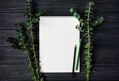写生簿和铅笔在黑木桌上,装饰用绿色玉树分支 平的位置,顶视图 免版税库存图片