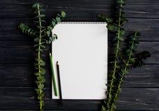 写生簿和铅笔在黑木桌上,装饰用绿色玉树分支 平的位置,顶视图 库存图片
