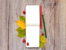 写生簿和铅笔特写镜头,装饰用秋天黄色离开和莓果 顶视图,平的位置 免版税库存照片