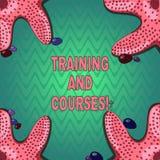 写训练和路线的手写文本 意味教训的系列概念教技能您需要海星 库存例证