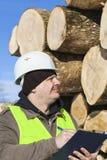 写近在日志堆的伐木工人 库存图片