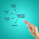 写HACCP概念的妇女手在蓝色背景为使用在制造业中 库存照片