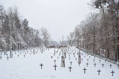 军事公墓,战争公墓,战争公墓冬天,军事公墓冬天,公墓战士冬天雪 免版税库存图片