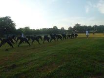 军校学生障碍锻炼  图库摄影