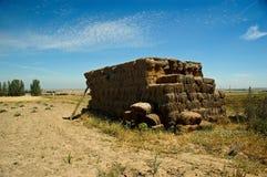 农业劳动。 免版税库存照片