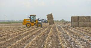 农业劳动 库存照片
