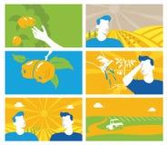 农业和种田集合背景的汇集 帮助 免版税库存图片