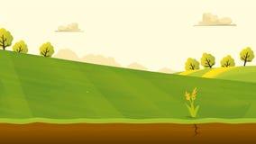 农业和种田风景视图 Agrotourism 帮助 免版税库存照片