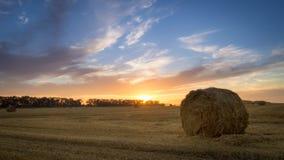 农业域 喂养牛的大包干草在冬天 免版税库存图片