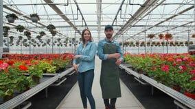 农业工程师通过有专业农夫的工业温室走 他们审查植物状态和 影视素材