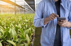 农业技术概念使用片剂的人农艺师  免版税库存照片
