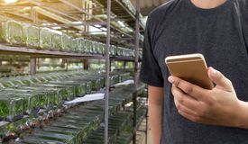 农业技术概念使用片剂的人农艺师  免版税图库摄影
