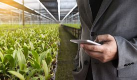 农业技术概念使用片剂的人农艺师  图库摄影