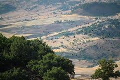 农业拖拉机 库存照片