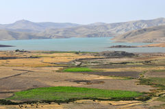 农业摩洛哥人 免版税库存照片